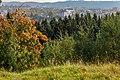 View from Kuhavuori in Sortavala.jpg