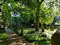 View from the bench (OpenBenches 6257-2).jpg