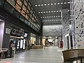 View in Hakata Station.jpg