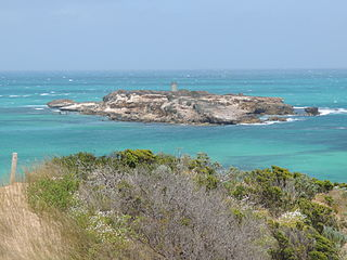 Penguin Island Conservation Park Protected area in South Australia