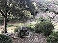 View of Terrapin Pond of Kashii Shrine.jpg