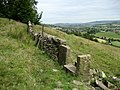 View over the Aire Valley - geograph.org.uk - 858744.jpg