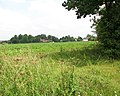 View towards Saxlingham Nethergate - geograph.org.uk - 1384124.jpg