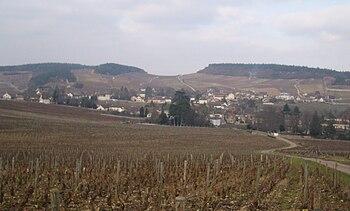 Vignoble de Mercurey.JPG