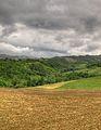 Vista dalla Madonna Dell'Uliveto - Albinea (RE) Italia - 15 Maggio 2011 - panoramio.jpg