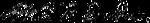 WEB DuBois signature.png