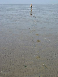 Vatu jūra - Wikiwand
