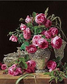 Rosa Botanica Wikipedia