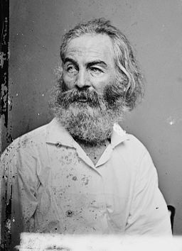 Walt Whitman - Brady-Handy