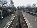 Wandsworth Common stn slow platforms high southbound.JPG