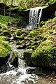 Wasserfälle im Butzerbachtal.jpg