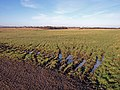 Water Logged Field Entrance - geograph.org.uk - 1715812.jpg