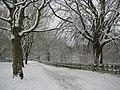 Watford, Cassiobury Park - geograph.org.uk - 1151113.jpg