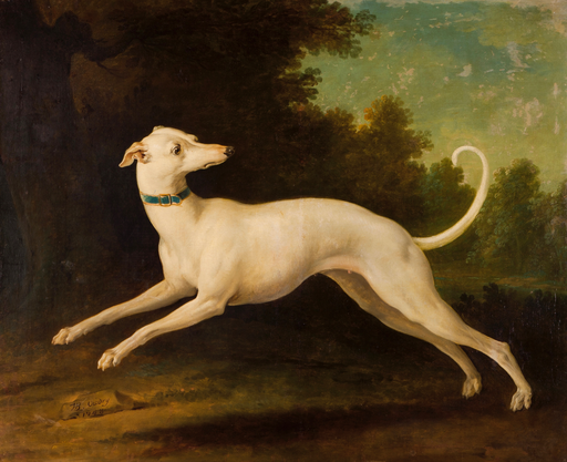 White Greyhound (1748) - Jean-Baptiste Oudry