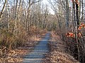 Whitney Spur Rail Trail, March 2014.JPG