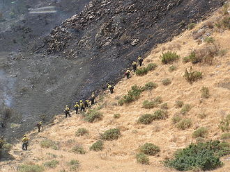 Interagency hotshot crew - A crew working a fireline in the Grapevine Pass in California.