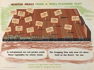 Henri Kay Henrion - Image: Winter Meals from a Well planned Plot Art.IWMPST17019