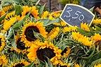 Winterswijk (NL), Wochenmarkt -- 2016 -- 4142.jpg