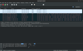 Wireshark 3.0.3 screenshot.png