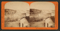 Woodward's Garden, from Robert N. Dennis collection of stereoscopic views.png