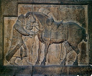 Photo of a stone relief showing a horse, saddled and equipped for riding, and a standing soldier trying to pull out an arrow from the horse's chest
