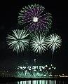 Zambelli Fireworks Internationale (5259816167) (cropped).jpg