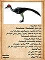 Zanabazar DinoCard Farsi.jpg