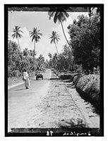 Zanzibar LOC matpc.11685.jpg