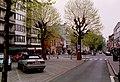 Zottegem Heldenlaan Gekandelaarde platanen (4) - 190545 - onroerenderfgoed.jpg