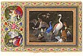 """Aquatic Birds at a Pool"", Folio from the Davis Album MET DT4887.jpg"