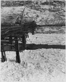 """Upstream view of contractor's trestle showing the accumulation of ice packed against the pile bents."" - NARA - 294244.tif"