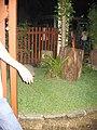 Đà Nẵng năm 2009-Quán Garden, số 236 Cửa Đại (7).jpg