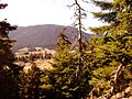 Μονοπάτι - panoramio (3).jpg
