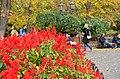 Городской сад по Дерибасовской. Фото 11.jpg