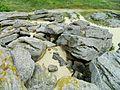 Кам'яні могили201714.jpg