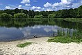 Мальовниче озеро навесні в парку Партизанської Слави.jpg