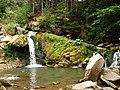 Національний природний парк «Сколівські Бескиди», Кам'яне́цький водоспа́д - panoramio (1).jpg