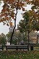 Осень в парке - Новодевичий монастырь.jpg