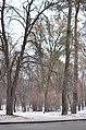 Парк КПІ. Київ. Фото 3.jpg