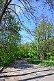 Парк Нивки східна частина, місто Київ. Фото 1.jpg