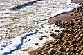 Пляж - panoramio (57).jpg