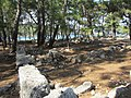 Портовая агора. Фаселис. Турция. Июнь 2012 - panoramio.jpg