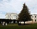 Рыльский район Марьино Парк 7 Ель рядом с дворцом.jpg
