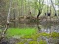 Самево Езеро (Езерче) 02.jpg