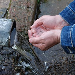 Сложенные руки человека образуют чашу для воды
