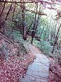 Смоларски водопад 46.jpg