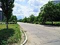 Солнечный. 4 июня 2013г. - panoramio.jpg