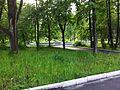 Фонтан - panoramio (48).jpg