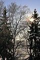 Царникава (Латвия) Солнечный зимний денёк - panoramio.jpg
