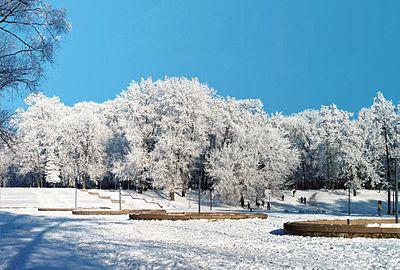 Чернігів. Міський сад взимку.JPG